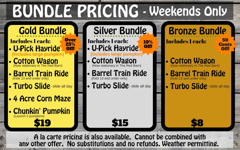 Bundle Pricing Infographic